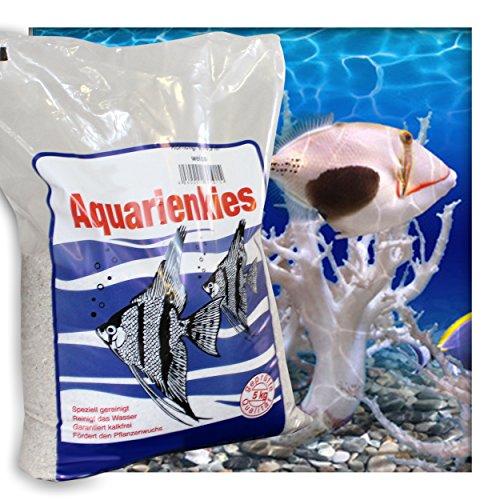 Kieskönig Aquariensand Aquariumsand Bodengrund 0,1-0,9 mm Aquarienkies hochrein Naturweiss 5 kg (1 x 5 kg Beutel)