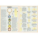 mudras et cinq elements