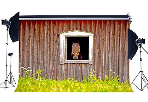 JoneAJ Alte Scheune Kulisse 7X5FT Vinyl Ländliches Ackerland Kulisse Pferd Scheune Verwitterte Holzplanke Grünes Gras Feld Natur West Cowboy Fotografie Hintergrund Tour Tourismus QB46