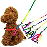 Petlicious & More Petliccious & More Rainbow Color Puppy Harness & Leash Set Small Dog Harness Leash (Harness + Leash)