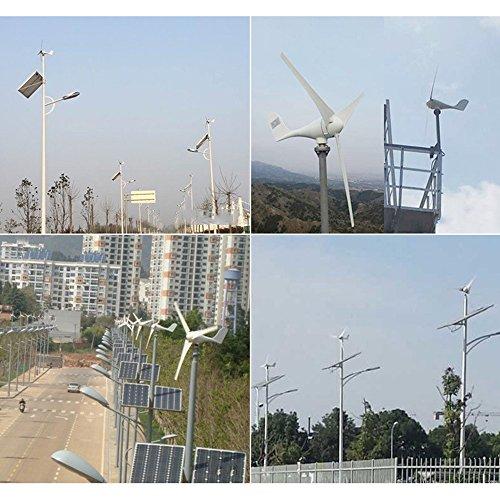 TOPQSC Wind Turbine Turbina Eolica di CC 12V / 24V Generatore di ...