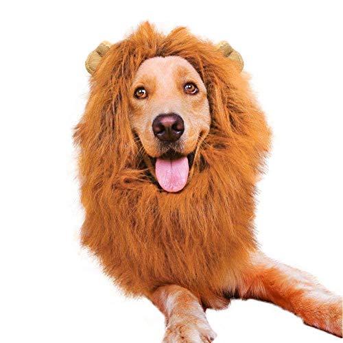 Gshy Löwe Mähne mit Ohren Haustier Hund Kostüm für Halloween Weihnachten Karneval Geburtstagsgeschenk