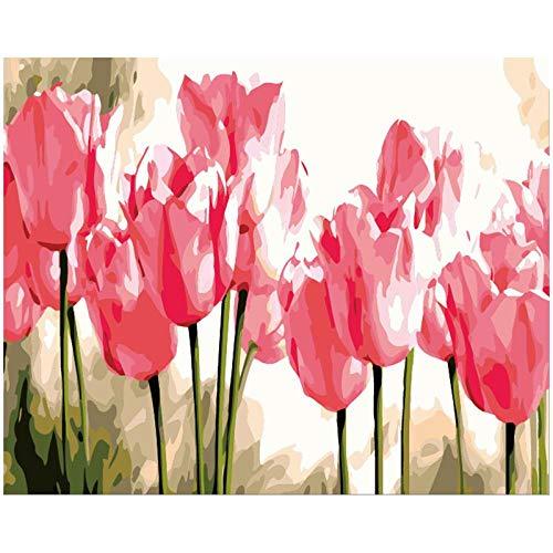 FZGZSW Rosa tulpe Pflanze DIY digitales malen nach Zahlen Moderne wandkunst leinwand malerei einzigartiges Geschenk wohnkultur 40x50 cm
