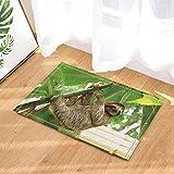 Tenda da bagno per animali selvatici, bradipo sull'albero in foglie di banane tropicali Tappeti da bagno, zerbino antiscivolo Asse da pavimento per interni, stuoia per vasca da bagno per bambini.