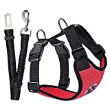 Best Four Paws Dog Harness For Cars - SlowTon Dog Car Harness Seatbelt Set, Pet Vest Review