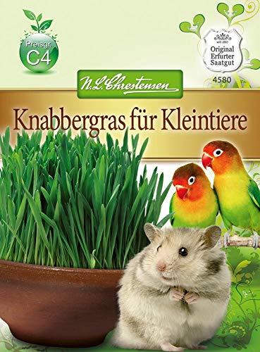 N.L. Chrestensen 4580 Knabbergras für Kleintiere (Knabbergrassamen)