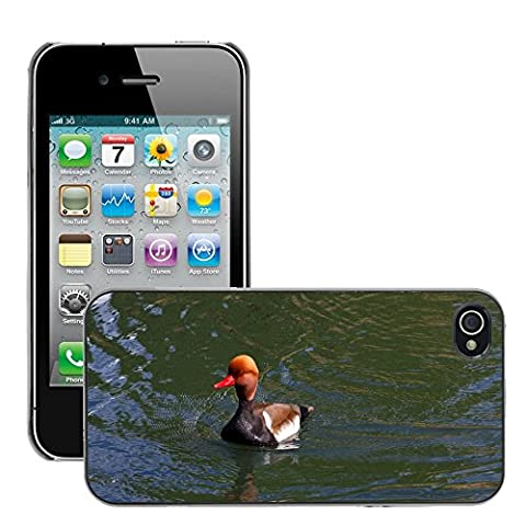 Just Phone Cover Hard plastica indietro Case Custodie Cover pelle protettiva Per // M00139732 Pochard Red Headed Pochard Canard // Apple iPhone 4 4S 4G