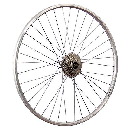 Taylor-Wheels 28 Zoll Hinterrad Felge YAK19 / 8 Fach Schraubkranz - Silber