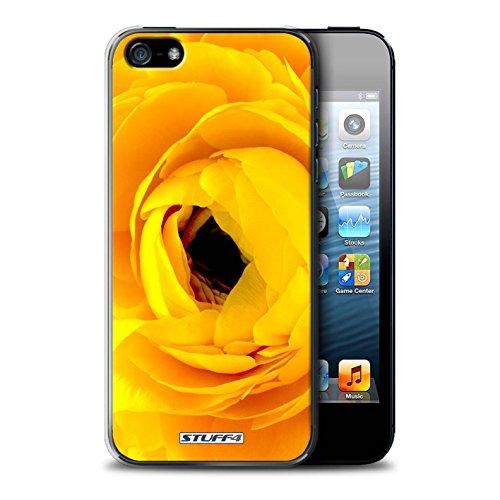 Gedruckt Schutzkoffer Schutzhüllen / Hülle für Apple iPhone 5/5S / Sonnenblumen Muster / Blumengarten Blumen Kollektion Begonia