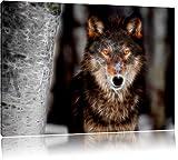 wunderschöner wachsamer Wolf auf Leinwand, XXL riesige Bilder fertig gerahmt mit Keilrahmen,...