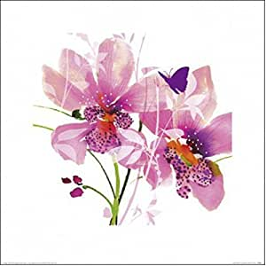 Posters: Flowers Poster Art Print - Orchid Blush, Summer Thornton (16 x 16 inches)