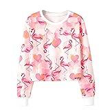 Dihope Damen Herbst Hoodie Flamingo Muster Kurz Pullover Rundhals Langarmshirt Sweatshirt Oberteil