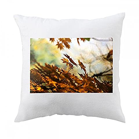 Pillow with Autumn, Leaves, Autumn Leaves, Light
