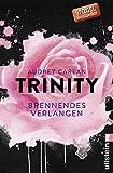 Trinity - Brennendes Verlangen (Die Trinity-Serie, Band 5) - Audrey Carlan
