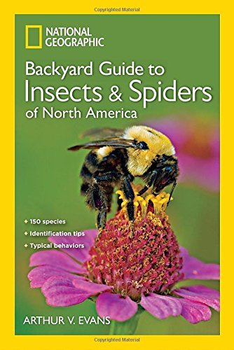ng-guide-to-the-insects-and-spiders-of-north-america-ng-guides