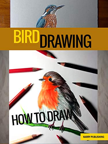 How to draw a bird Step by Step Drawing Book (English Edition)