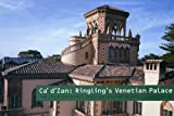 Ca D'Zan: Ringling's Venetian Palace (Art Spaces 1)