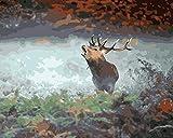 qiyan Ciervo Llamado Pintura Digital Animal Art Imagen para Colorear para Sala de Estar decoración del hogar 16 * 20 Pulgadas