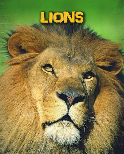 Lions (Living in the Wild: Big Cats)