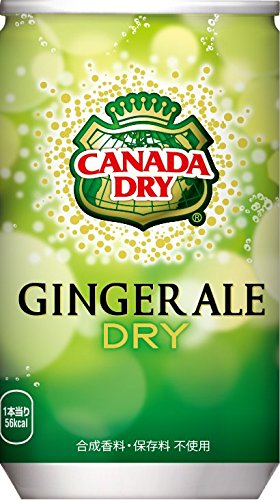 160mlx30-questo-ale-coca-cola-canada-dry-ginger