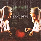 Songtexte von Calico System - They Live