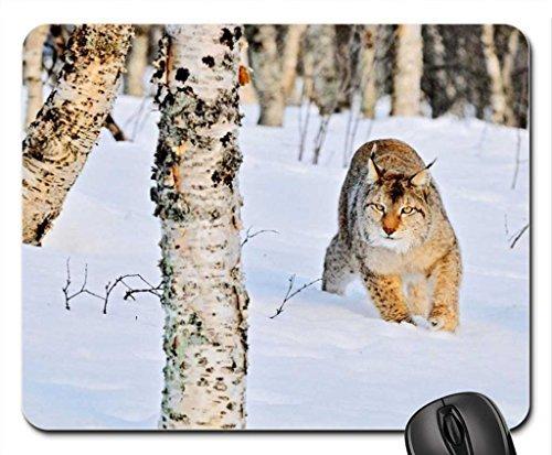 bobcat-mouse-pad-mousepad-bears-mouse-pad