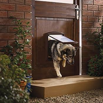 PetSafe - Porte pour Animaux d'Origine Staywell (M), Chatière pour Chien Moyen, Résistante, Battant Robuste, Panneau de Fermeture Inclus - Brun