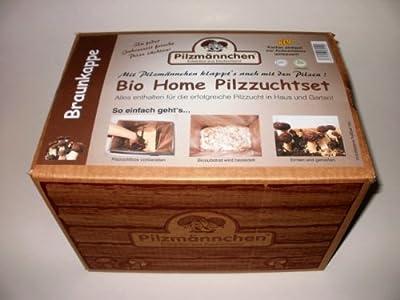 Bio Pilzzuchtset von der Braunkappe, für Haus und Wohnung, in spezieller Zuchtbox von Pilzmännchen auf Du und dein Garten