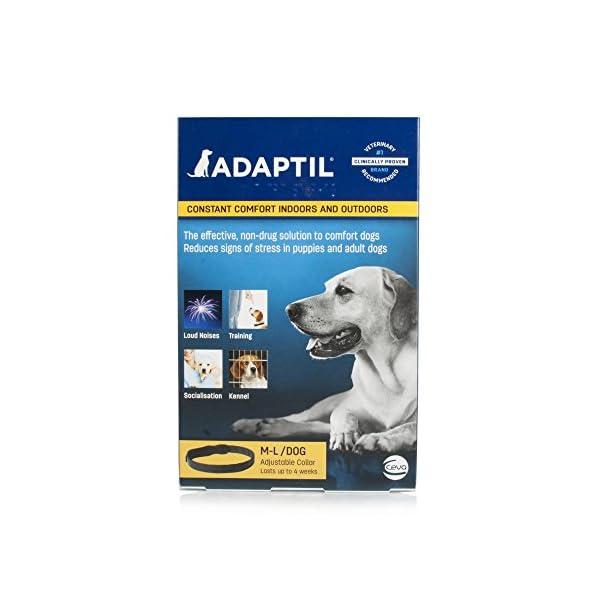 ADAPTIL Collar Medium/Large 51lnyALCKLL