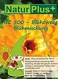 ERRO Saatgut Blühzwerg mehrjährig niedrigwachsend 100g - Blumen Samen, Saat für Bunte Blumen, 2729 Geschenkidee für Gartenfreunde