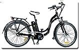 Vélo Eléctrique ESTILO NX - Shimano Nexus 3 sp - Freins Tektro - Fourche...