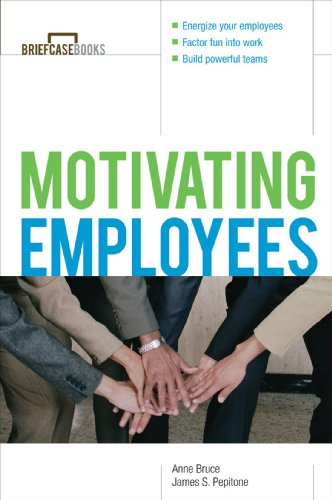 motivating-employees-briefcase-books-series