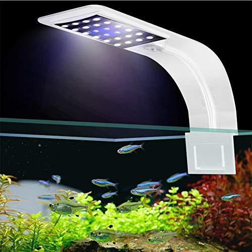 Womdee Lámpara de Acuario LED, LED Clip Acuario luz Clip en el Tanque de Peces iluminación LED lámpara con luz Blanca y Azul para el Tanque de Peces