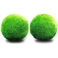 JIALONGZI 1 PCS Planta Viva Moss Ball Acuario pecera Ornamento bajo Mantenimiento, bordillos Crecimiento de Algas