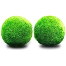 JIALONGZI 1 PCS Planta Viva Moss Ball Acuario pecera Ornamento bajo Mantenimiento, bordillos Crecimiento de