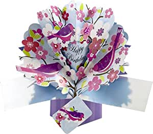 Second Nature Pop Up Greeting Card For Birthday Office Products