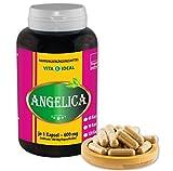 Angelica sinensis 180 Kapseln je 520mg (Dong Quai, Engelwurz) rein natürliches Pulver, ohne Zusatzstoffe