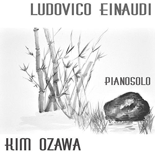 Ludovico Einaudi - Pianosolo