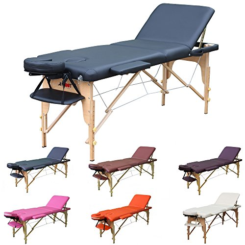 H-ROOT 3 Section Lightweight Portable Massage Table Couch Bed Plinth Therapy Tatoo Salon Reiki Healing Swedish Massage 13.5KG(Black)