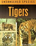 Tigers (Endangered Species)