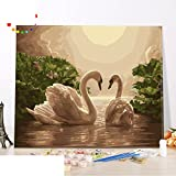 USDBAVBSCFWS DIY Ölgemälde Living Room,Schlafzimmer,Landschaft,Animal swan Hand-Painted digital Dekoration Painting New Love-A 60x75cm(24x30inch)