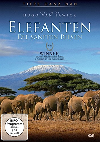 elefanten-die-sanften-riesen