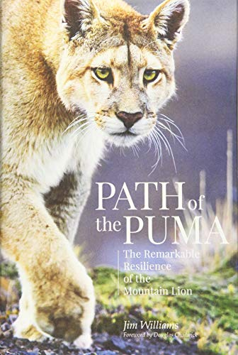 Path of the Puma: The Remarkable Resilience of the Mountain Lion -