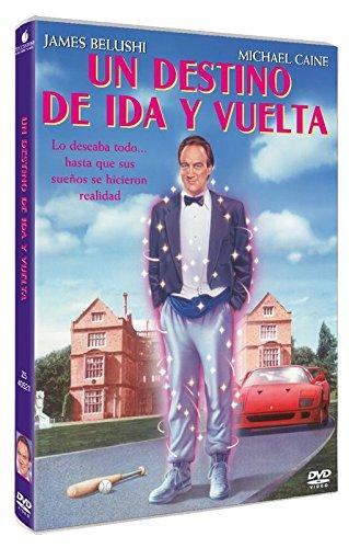Mr. Destiny (UN DESTINO DE IDA Y VUELTA, Spanien Import, siehe Details für Sprachen)