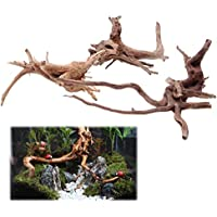 Haven Shop - Decoración de raíces ornamentales para acuario, madera natural, tronco de madera natural, árbol de acuario, pecera, decoración de plantas