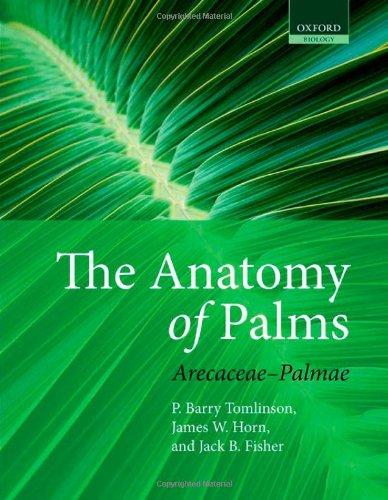 The Anatomy of Palms: Arecaceae-Palmae (Palm De)