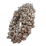 Naturkranz Deko-Kranz groß Ø 40cm in dunkelgrau, gefertigt aus Kokos-Früchten. Türkranz zum hängen oder als Tischdekoration im Shabby chic Design, zeitloses Wohnaccessoires als Natur-Deco von Glaskönig
