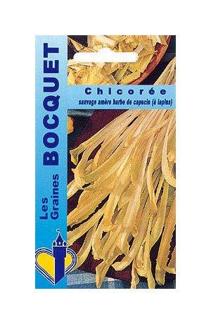 Les Graines Bocquet - Graines De Chicorée À Large Feuille Barbe De Capucin - Graines Potagères À Semer - Sachet De 6Grammes