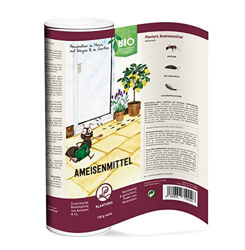 Plantura Bio-Ameisenmittel, zuverlässige Bekämpfung von Ameisen & Co. wirkt biologisch & giftfrei, Pulver anwendbar im Haus, auf Wegen und im Garten, 150g Dose