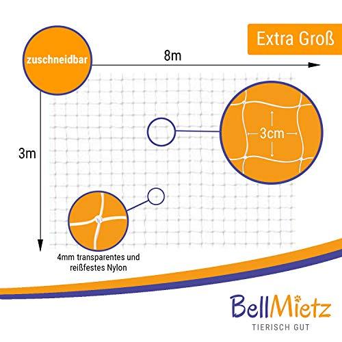 BellMietz Katzennetz für Balkon und Fenster | Extragroßes 8x3m Katzen-Schutznetz | Inkl. 25m Befestigungsseil | Balkonnetz mit Gratis Ebook - 3